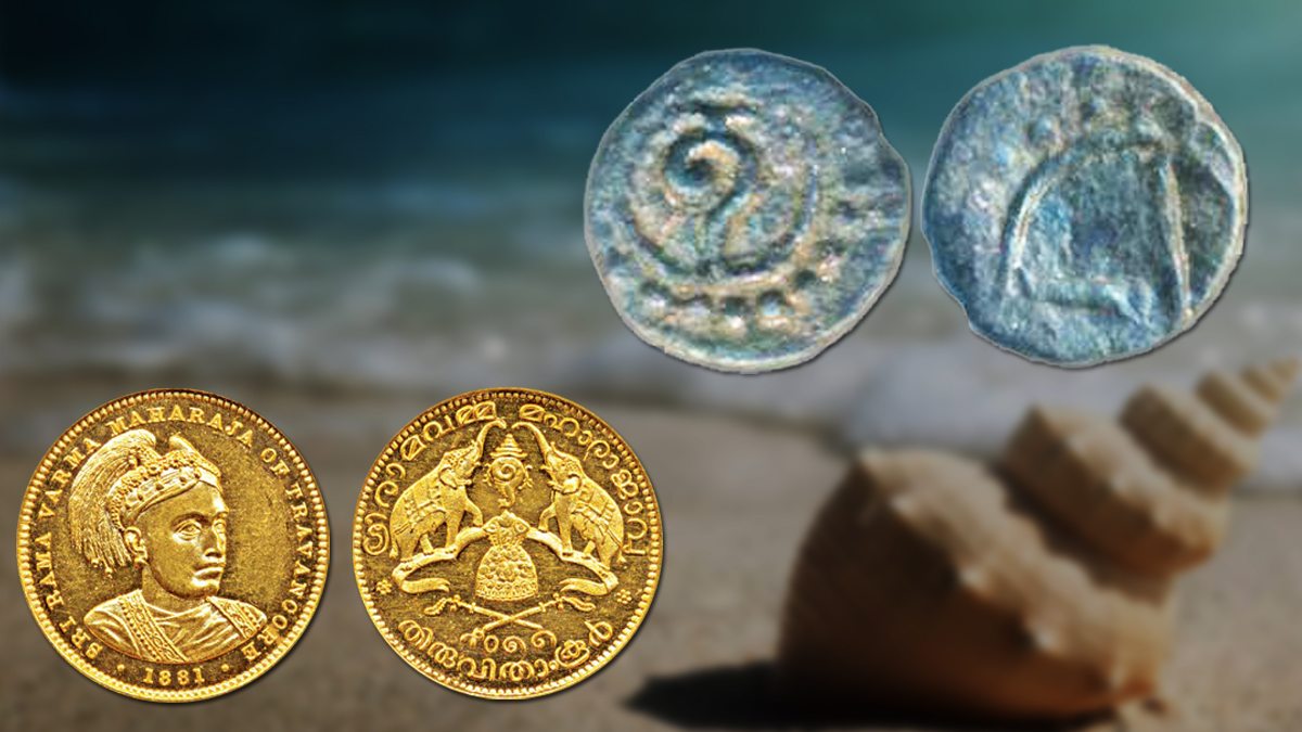 conch shell vintage coin