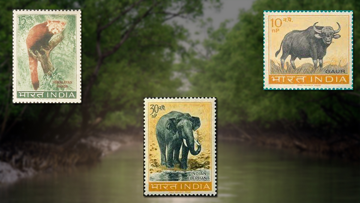 wildlife-series-1963