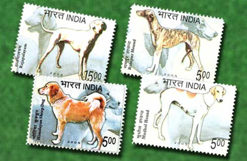 Canine-Friends-on-Stamps-of-India